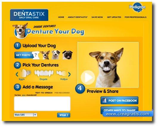 Creare Fotomontaggi con la foto del proprio cane