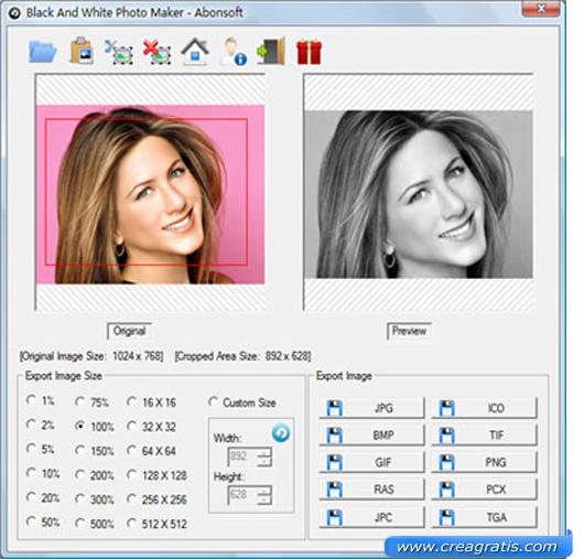 Interfaccia Programma per foto in bianco e nero