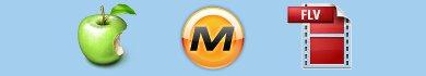 Vedere i video di Megavideo su iPhone