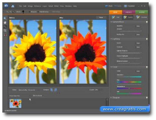 Quinto software free per la gestione di foto