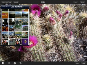 Immagine dell'app Photoshop Express per iPad