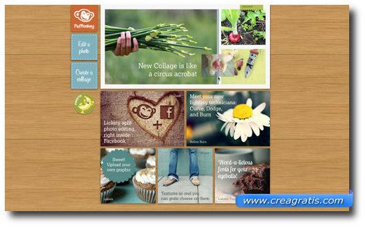 Immagine del sito Picmonkey per modificare foto online