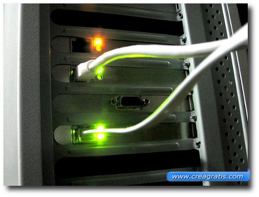 Immagine di due cavi di rete