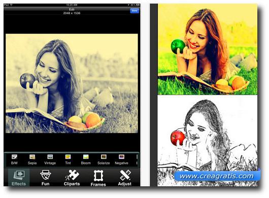 Immagine dell'app Pholeido