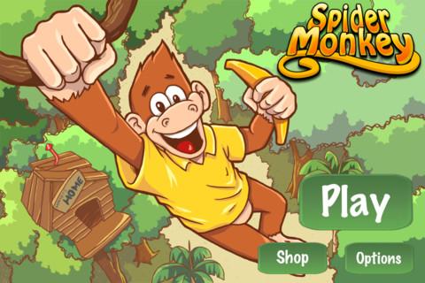 Immagine del gioco Spider Monkey