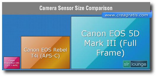 Immagine sulla dimensione del sensore della fotocamera