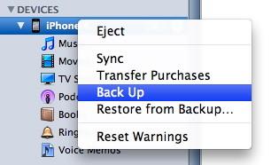 Schermata di iTunes per copiare gli SMS dall'iPhone