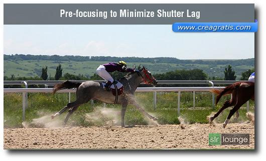 Foto di esempio di un cavallo in movimento