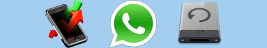 Fare il backup delle conversazioni di WhatsApp dall'iPhone al PC
