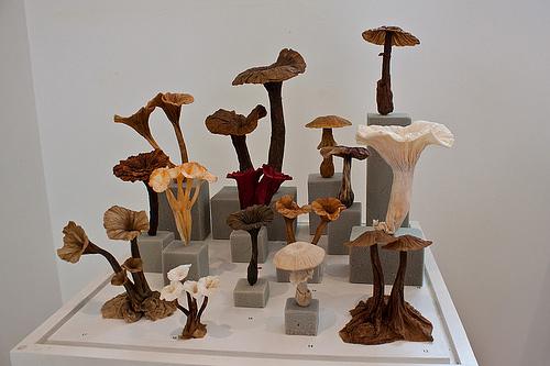 Immagine dell'origami Il bosco dei funghi