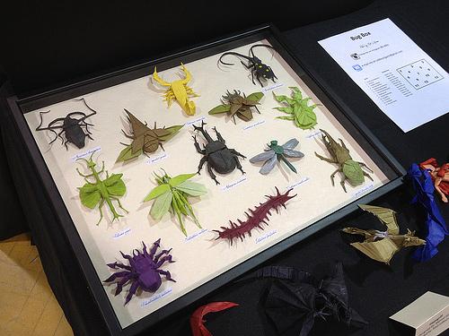 Immagine dell'origami La collezione di insetti