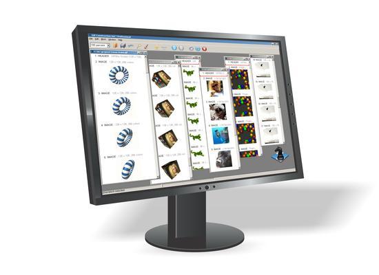 Interfaccia grafica del programma Alchemy Mindwork's GIF Construction Set