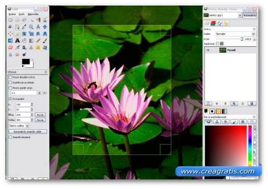 Immagine del programma GIMP
