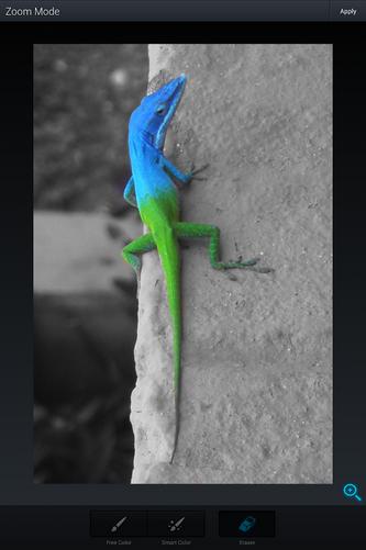 Schermata dell'applicazione Aviary Photo Editor per Android