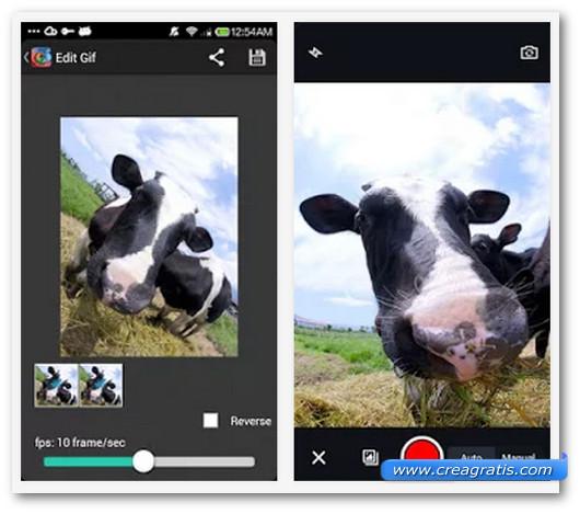 Schermate dell'app GIF Camera per Android