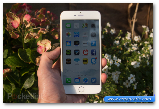 Immagine del phablet Apple iPhone 6 Plus