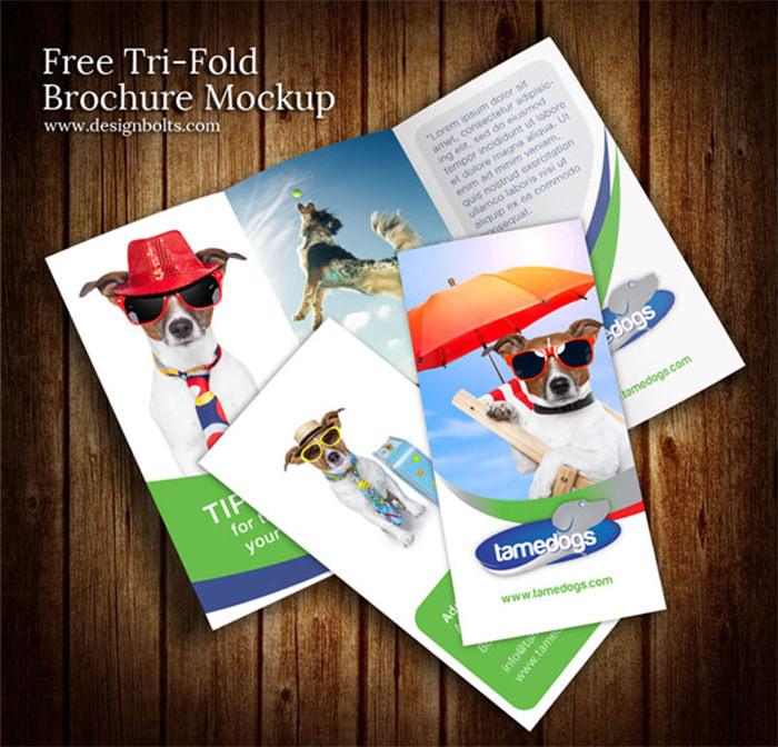 Modello di brochure in PSD da scaricare gratis n.9