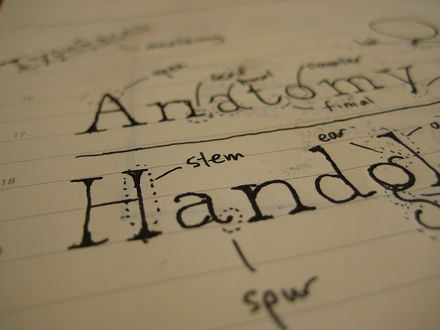 Immagine di una bozza di font disegnato