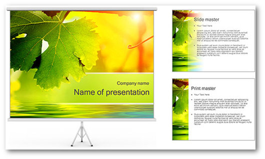 Immagine di un template PowerPoint del sito SmileTemplates