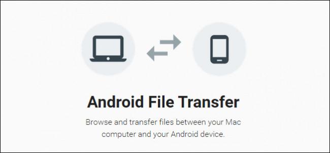 Immagine dell'app Android File Transfer
