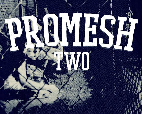 Anteprima del font Promesh