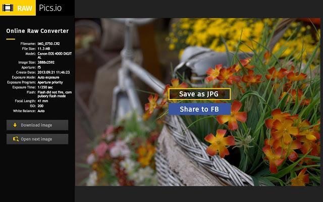 Convertire le immagini online con RawPics
