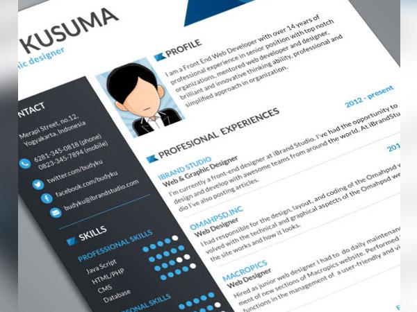 33 Modelli di Curriculum in PSD e AI per Photoshop e Illustrator - flasher