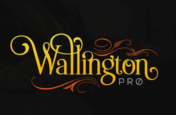 The wallington pro